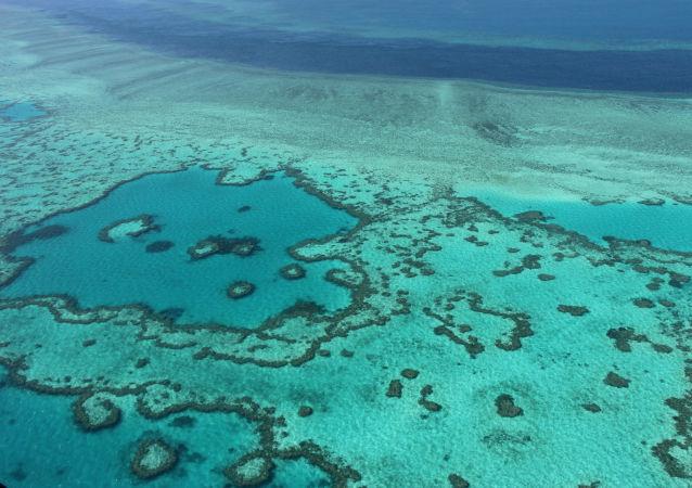 澳大利亚将拨款5亿美元保护大堡礁不受气候变化影响