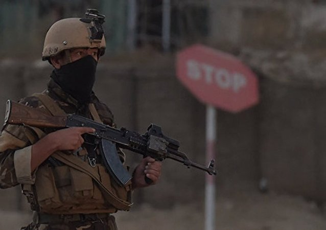 美国阿富汗问题特使未证实有关俄向塔利班供应武器的消息