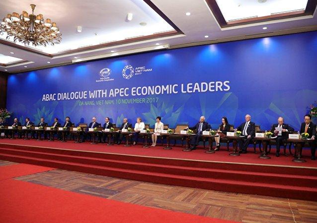 俄罗斯总统普京参加2017年亚太经合组织峰会 (资料图片)