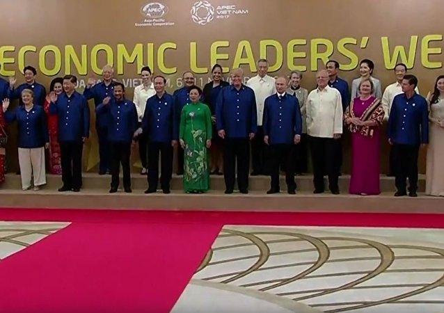 越南APEC峰会期间会晤