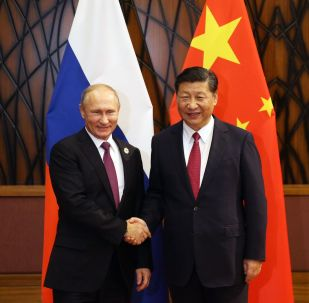 Президент РФ Владимир Путин и председатель Китайской Народной Республики Си Цзиньпин во время беседы на полях саммита стран АТЭС в Дананге