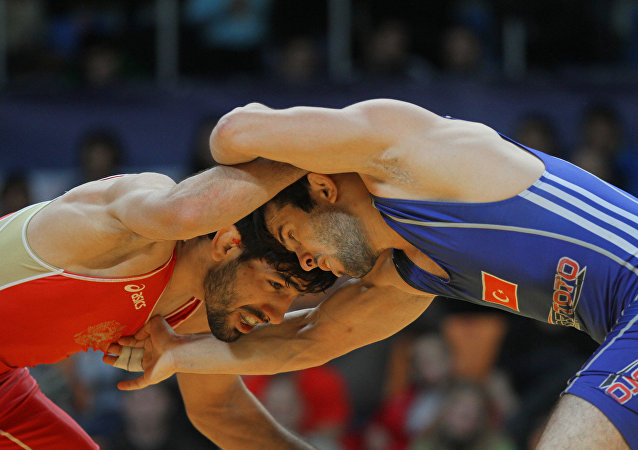 欧洲国家杯摔跤赛