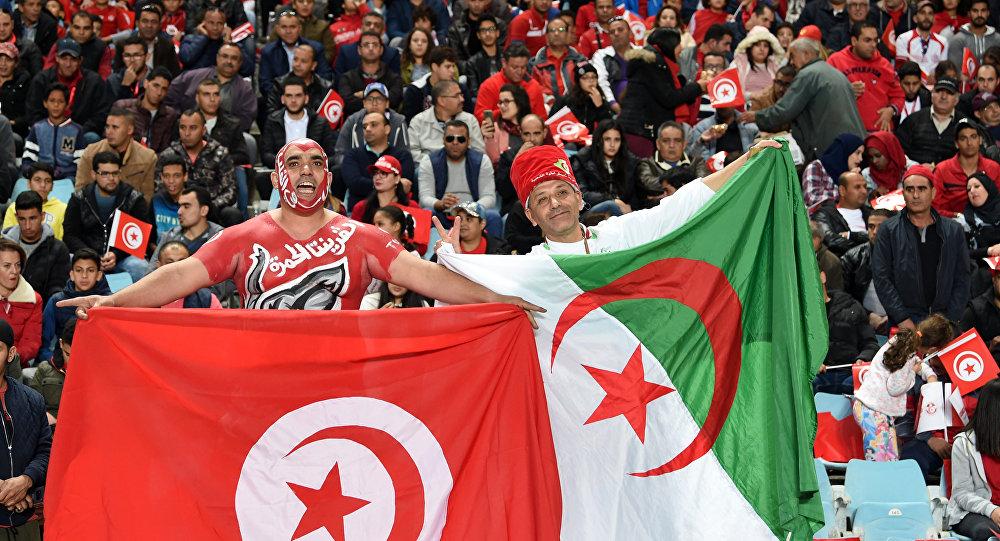 史上首次!4支阿拉伯队伍晋级2018世界杯