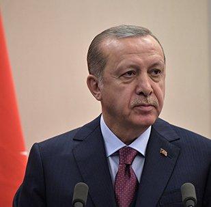 埃尔多安:土耳其将同样清除伊德利卜的恐怖主义威胁