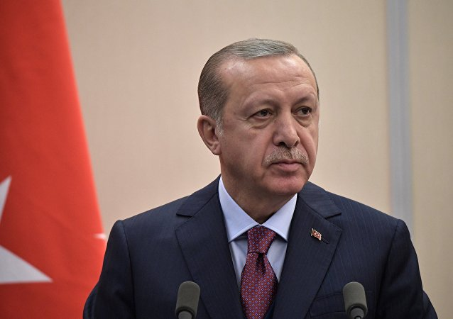 土耳其外长:埃尔多安将在未来几周内访问俄罗斯