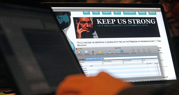 阿桑奇:維基解密將繼續自己的活動