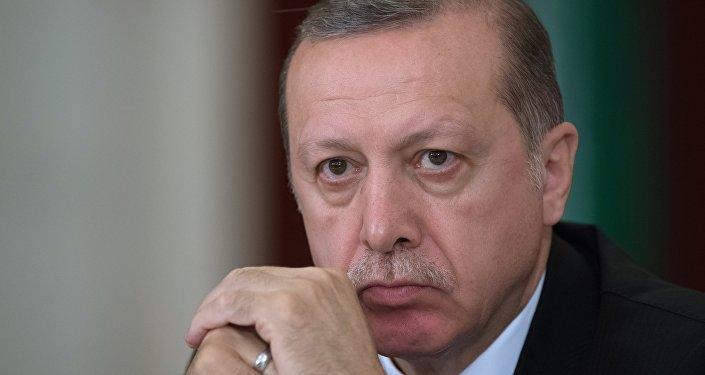 土总统致电普京表示在叙阿夫林的军事行动将持