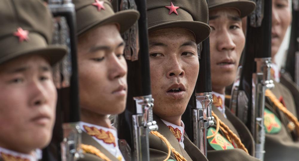 在逃离朝鲜的士兵体内发现数十条寄生虫