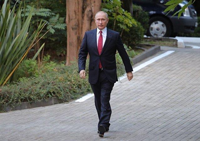 普京建议制定复兴叙利亚的全面计划