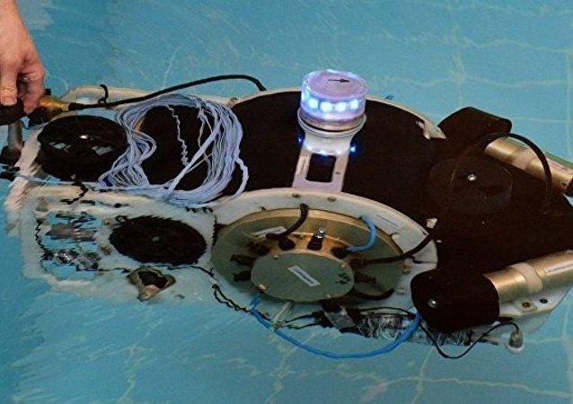 俄首屆海上機器人大賽或將在2018年東方經濟論壇期間舉辦