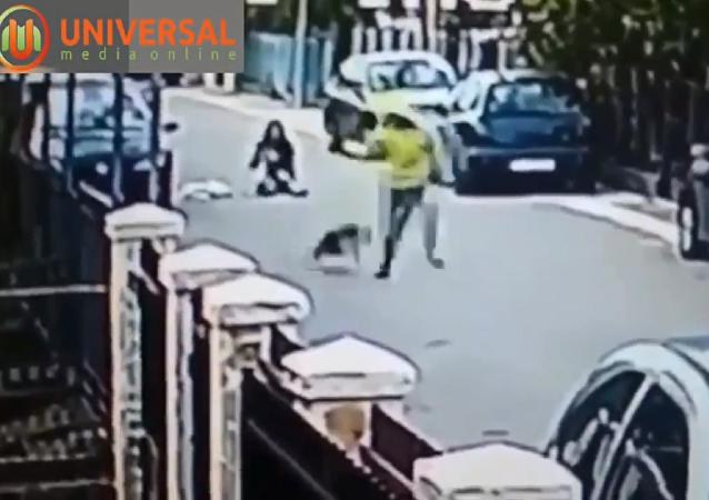 黑山一流浪狗将一名女士从抢匪手中救出