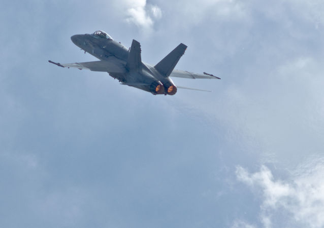 """芬兰空军的""""大黄蜂""""(F/A-18 Hornet)战斗机"""