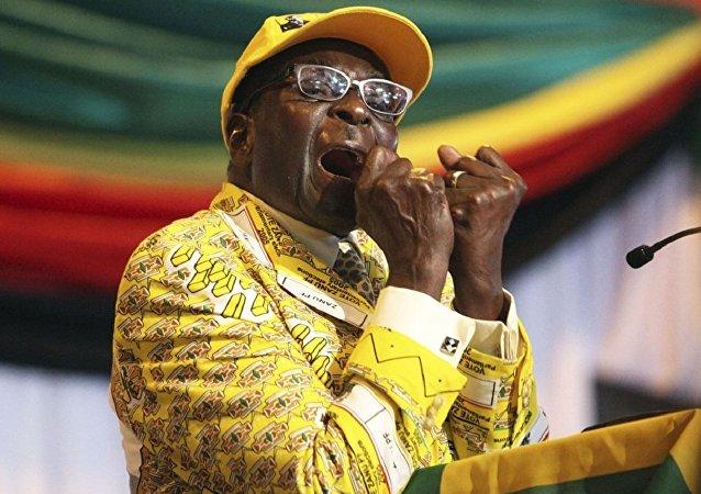 津巴布韦驻俄大使:穆加贝会拿到15万美元,不过不是1个月,而是1年