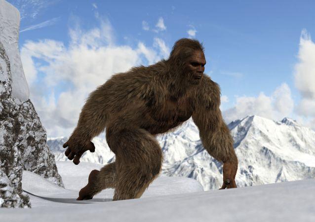 科学家:喜马拉雅雪人实为熊