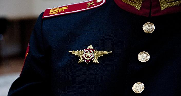 莫斯科每年一度勝利閱兵期間參加者佩戴胸章