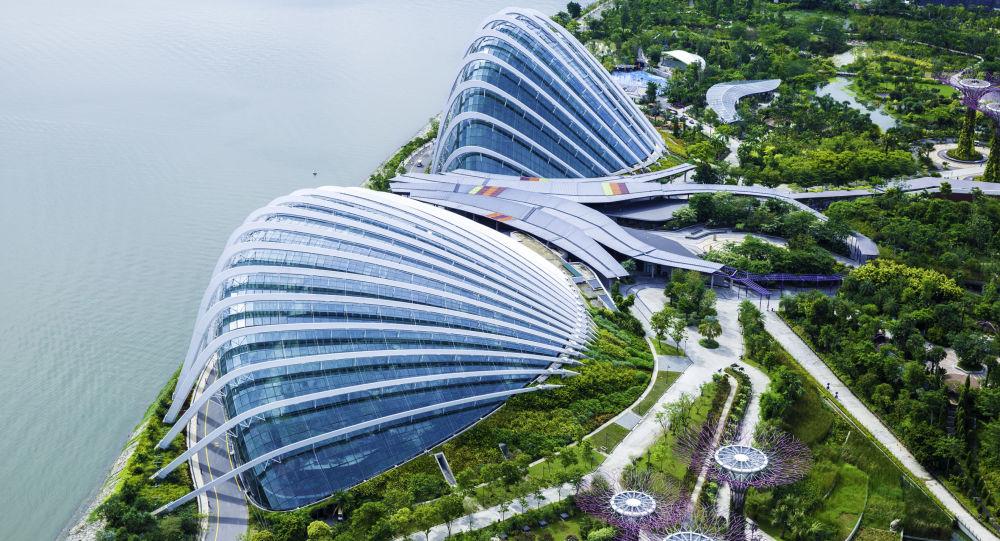 专家:新加坡或成为朝鲜的主要经济伙伴之一