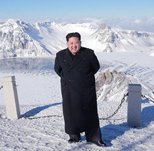 """普京:朝鲜领导人金正恩""""赢了当前这局棋"""""""
