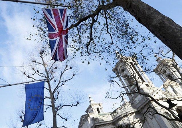 英国新兴党派有意重新考虑脱欧决定