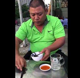男子吞活章魚(視頻)