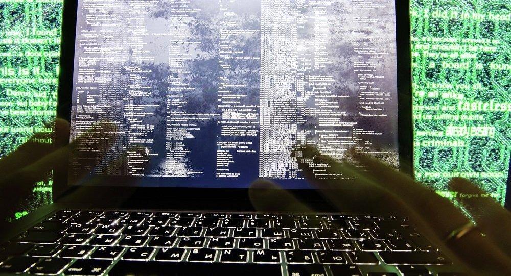 与俄罗斯在打击黑客方面合作的国家数量增长四分之一