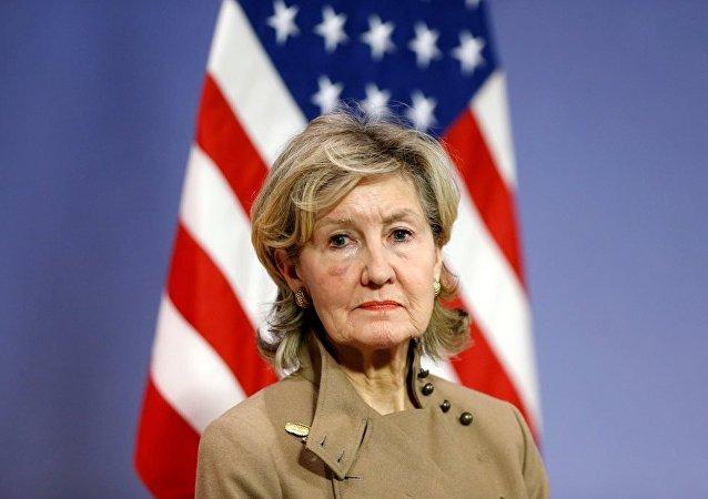 美国常驻北约代表哈奇森