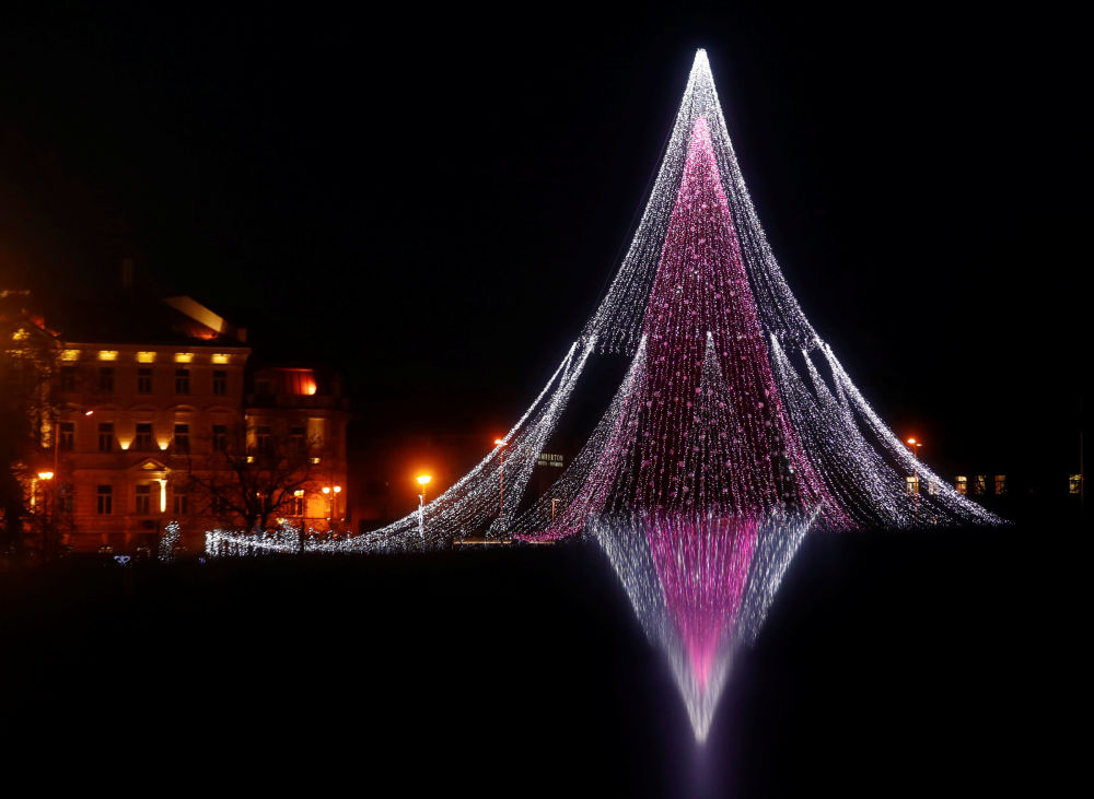 立陶宛发光的圣诞树