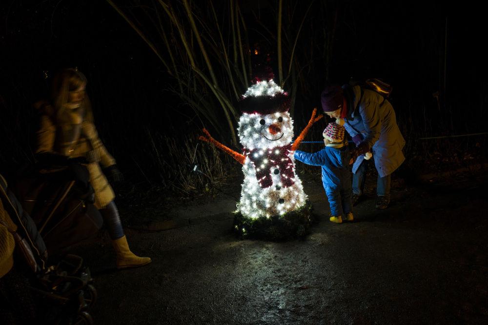 柏林植物园的LED发光雪人