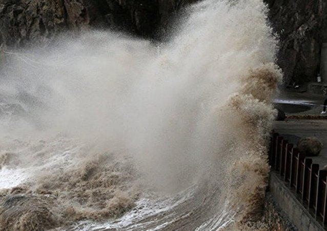 科学家:台风将来自朝鲜对海洋生物有害的垃圾带到滨海边疆区