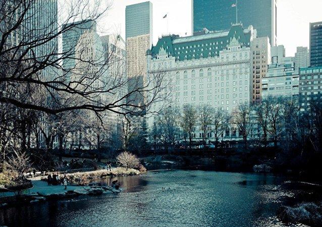 紐約一家賓館向旅客推出感受《小鬼當家》主人公一天生活的服務項目