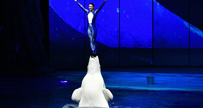 女馴獸師和白鯨