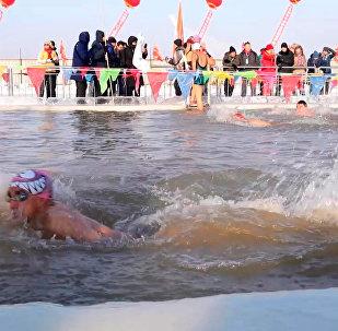 中俄美冬泳選手相聚哈爾濱國際邀請賽