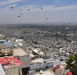 俄中商定坚决主张维护叙利亚领土完整