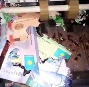 哈萨克斯坦自动取款机里的钞票被老鼠咬破