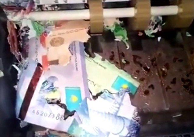 哈薩克斯坦自動取款機里的鈔票被老鼠咬破