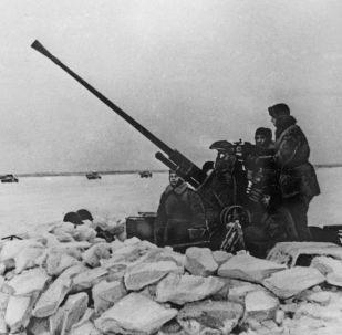 俄罗斯成功试射在新地岛发现的1927年产高射炮