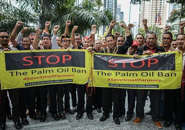 媒體:馬來西亞兩千多油棕園主在歐盟代表處前舉行抗議