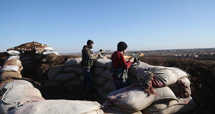 土耳其武装力量在叙利亚阿夫林