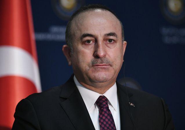 土耳其外长