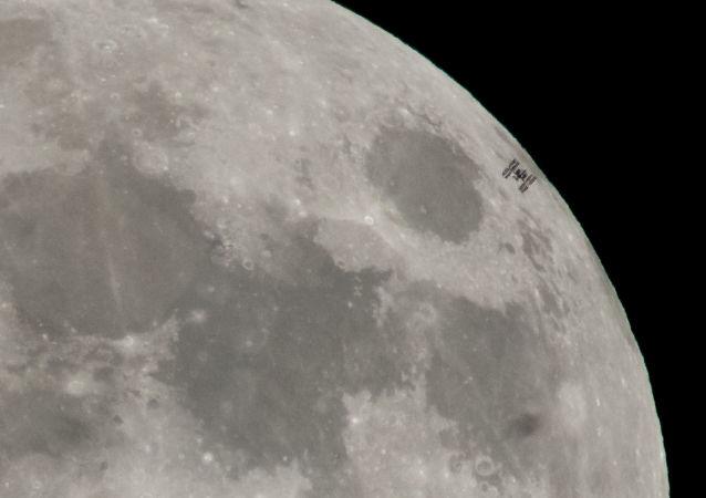 俄国家航天集团打算将动物送向月球并为此建造单独飞船