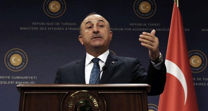 土耳其外長:土美就兩國關係正常化達成協議