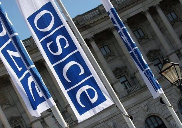 需要欧安组织的权威来放行俄观察员参加乌选举