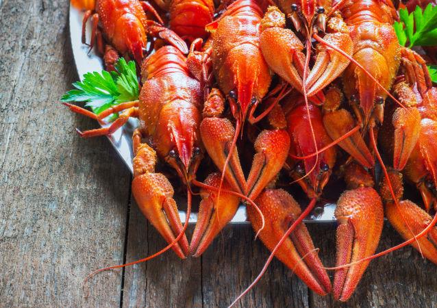 2.5万吨中国小龙虾出征世界杯 为球迷加餐