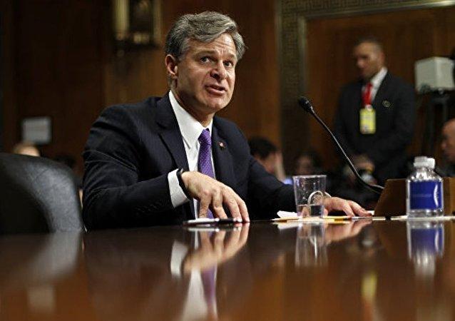 美国联邦调查局局长克里斯托弗·雷