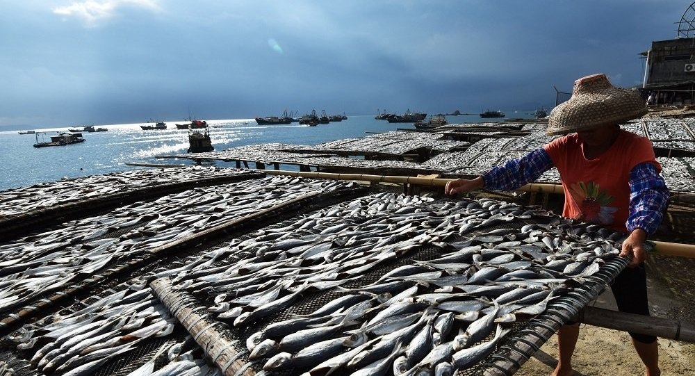 进口的食品农产品应该符合中国相关检验检疫规定