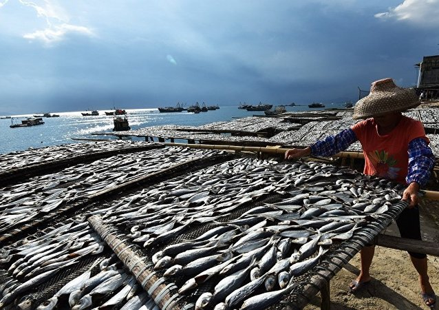 中國將在海南建設首個深遠海「智能漁場」
