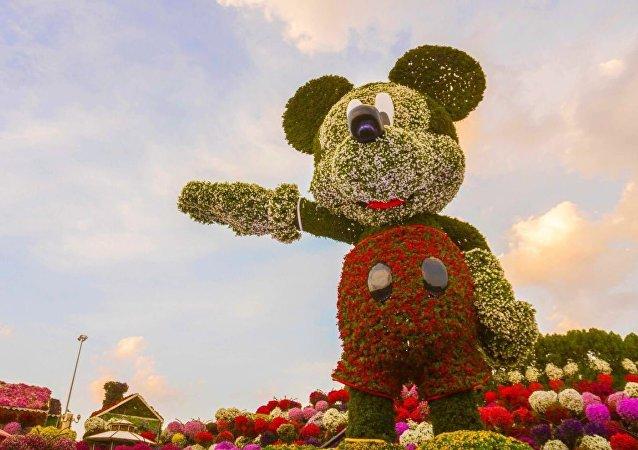 鲜花版世界最高米老鼠现身迪拜用