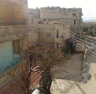 人道停火第四日敘政府軍記錄到37次武裝分子破壞行為