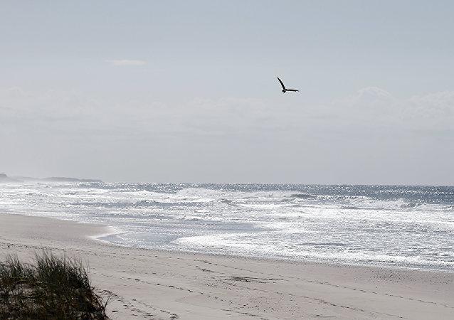 有人在澳大利亚海滩发现一个装着古老纸条的漂流瓶