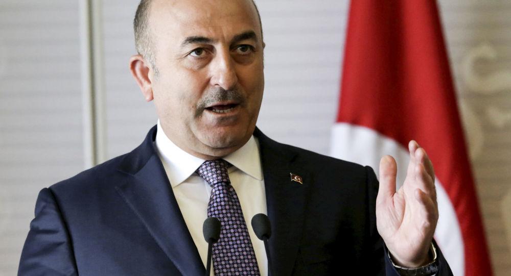"""土耳其外长:土俄应加强合作防止""""伊斯兰国""""蔓延"""