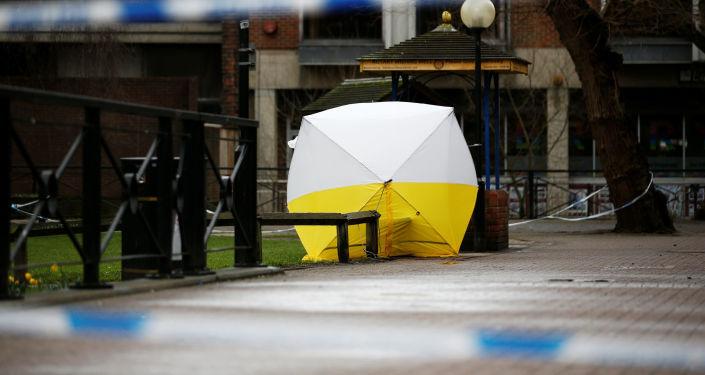 特朗普表示將根據事實對斯克里帕爾中毒案作出結論